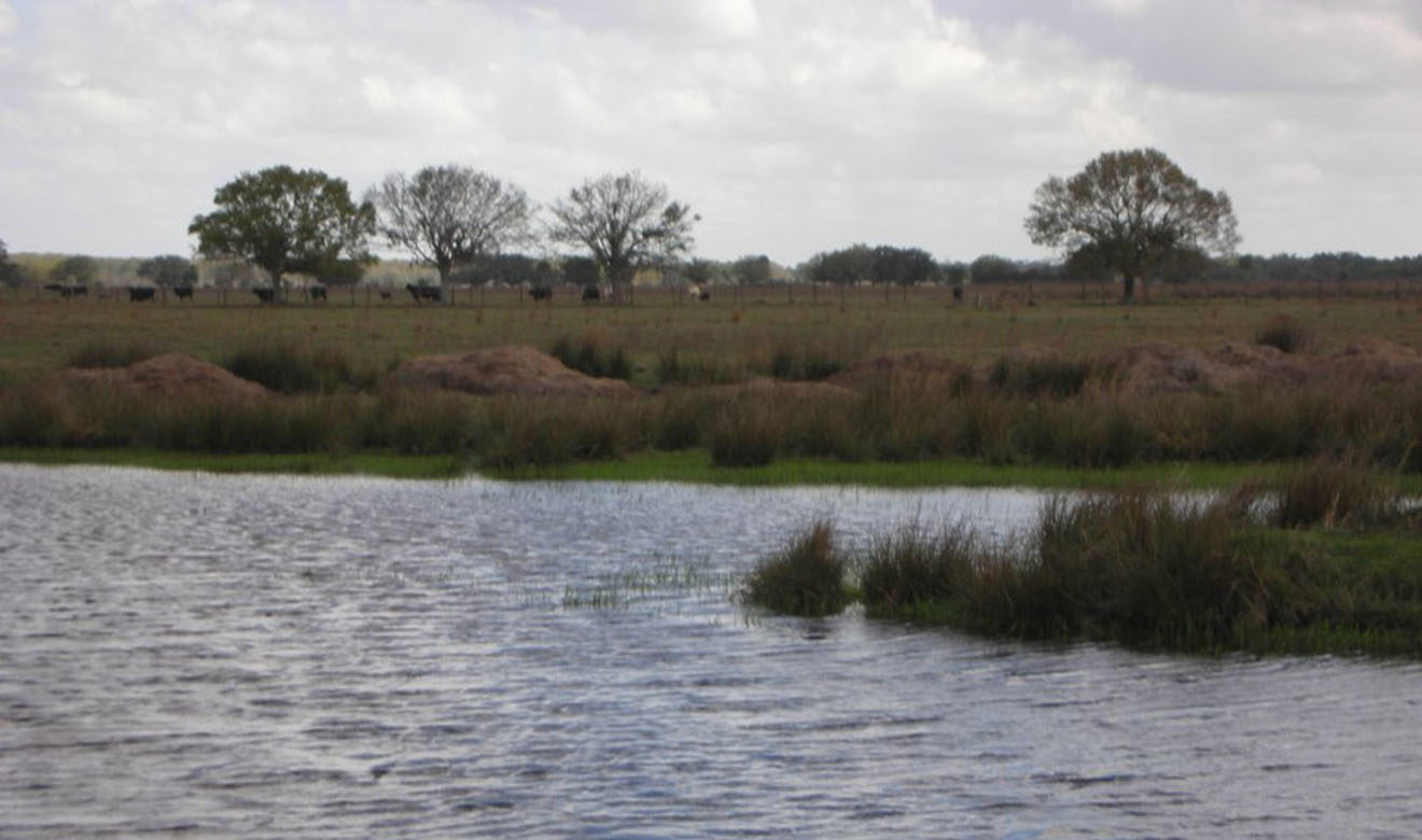 One of several ponds at Basinger Ranch