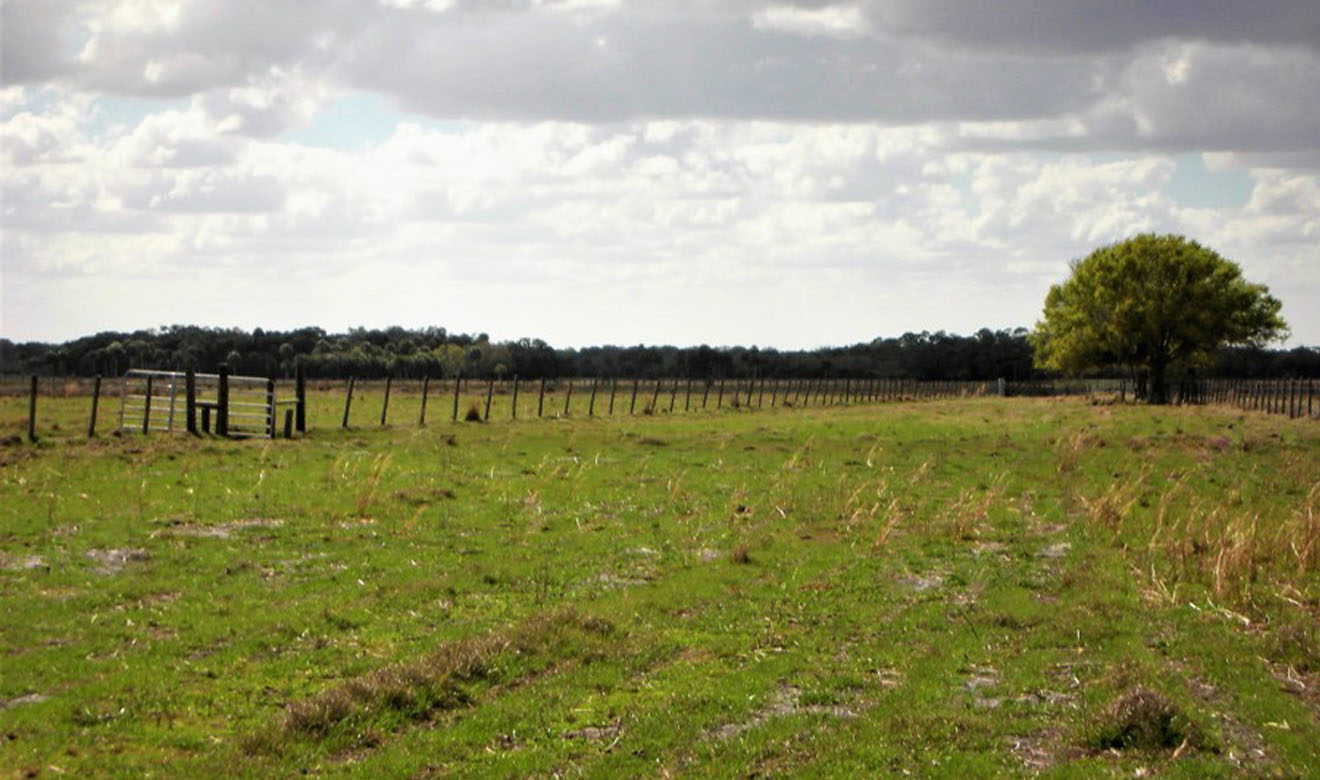 View of Pastures