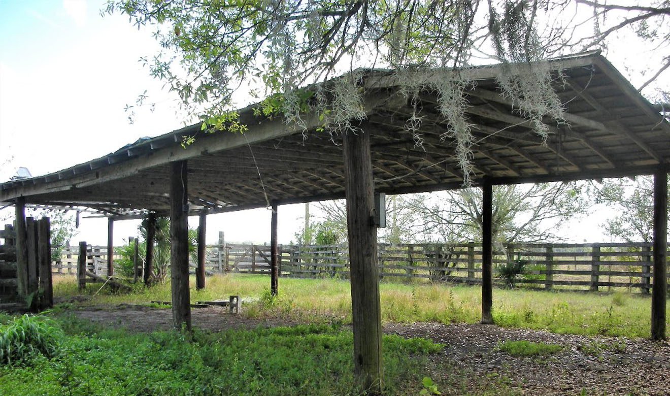 Pole barn at end of cow pens for cattle chute