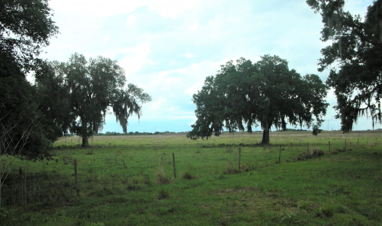 Attractive Ranch Property close to Coast and I95